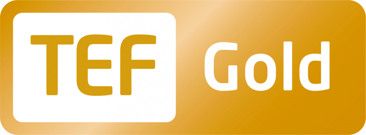 MA Education Online TEF Gold