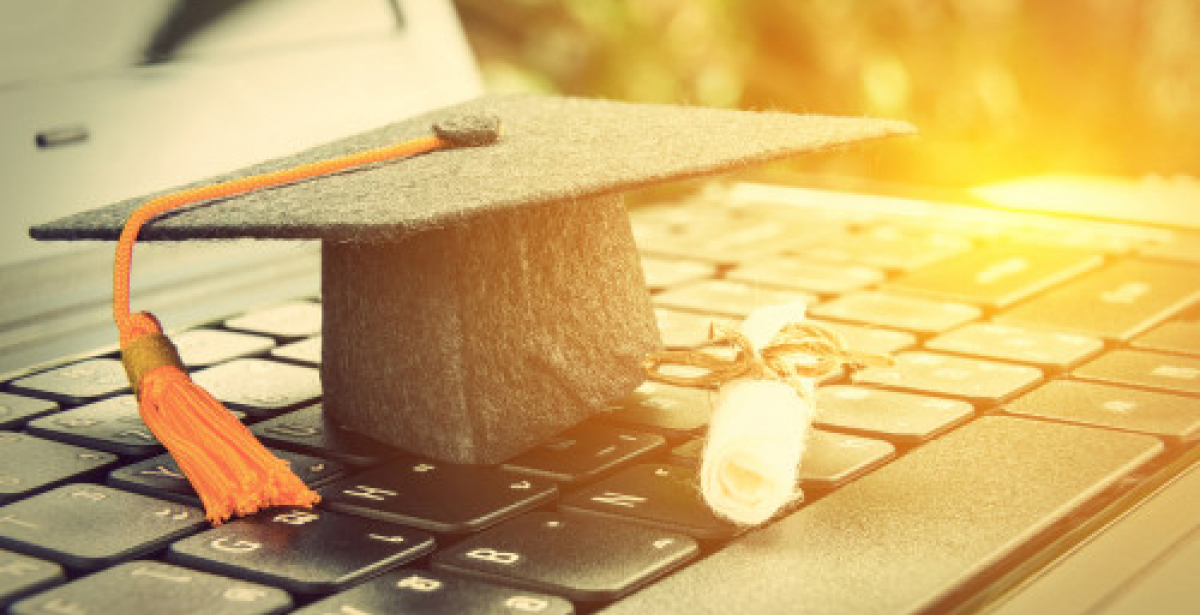 Building on Your Experience with a Postgraduate Degree